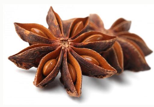 Hoa hồi việt nam / Star aniseed from Vietnam