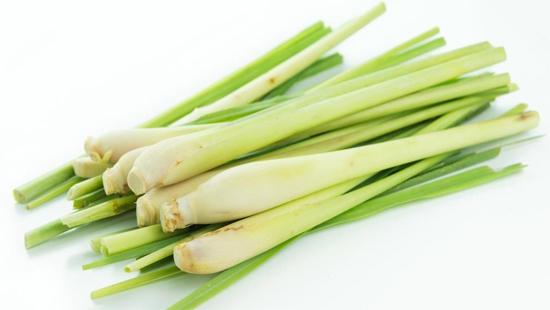 Sả tươi / Fresh lemongrass